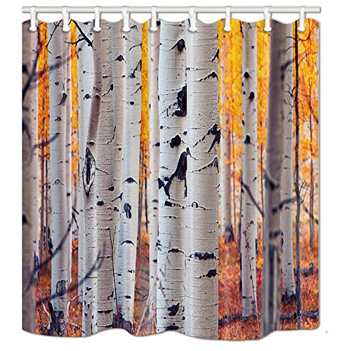 NYMB Birch Tree Bath Curtain 69X70 inches Mildew Resistant Polyester Fabric Shower Curtain Set Fantastic Decorations