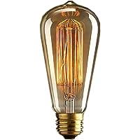 DSYJ - Bombillas incandescentes de filamento tipo jaula de ardilla (110 V, E26, Edison, 40 W, 1 unidad), color blanco