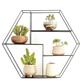 Support Pour Plantes D Exterieur A 5 Niveaux Pour Plantes