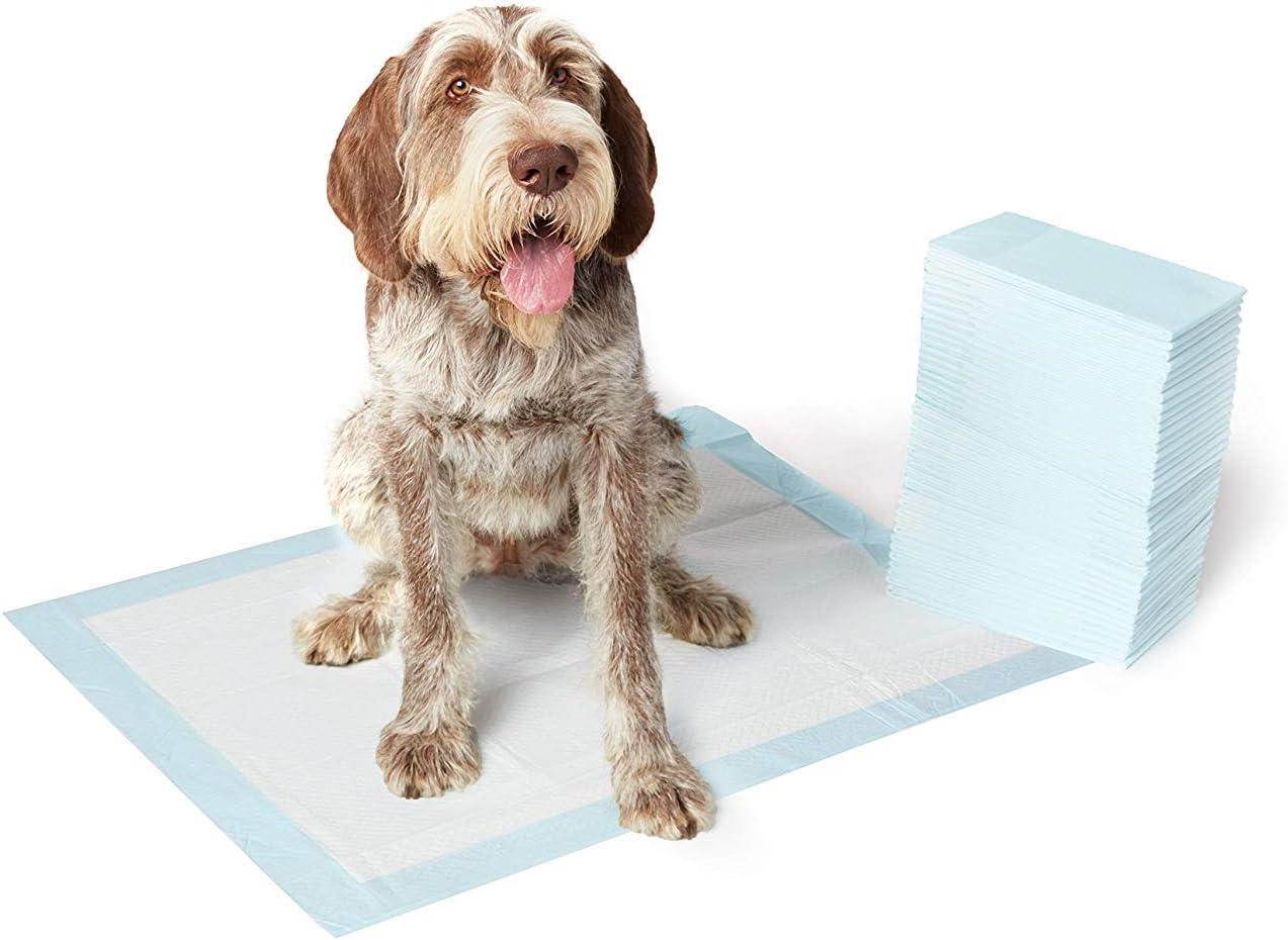 AmazonBasics - Toallitas de entrenamiento para mascotas (tamaño extragrande, 40 unidades)
