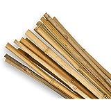SupaGarden cannes de jardin en bambou extra solide des de qualité supérieure, 0,6m, lot de 20