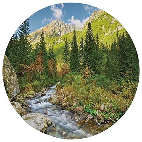 Round Rug Mat Carpet,Outdoor,Roztoka Stream Tatra National Park Carpathian Mountains Poland Woods,Green Light Green Tan,Flannel Microfiber Non-slip Soft Absorbent,for Kitchen Floor (Tatra Sink)