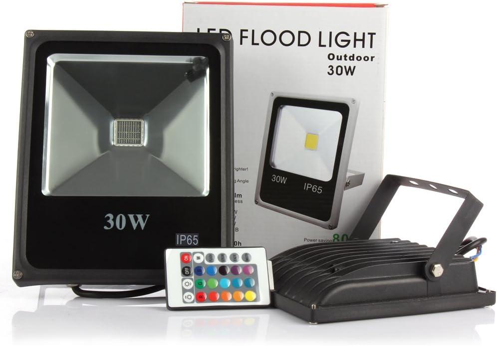 FOCO Proyector LED RGB 30W con Mando Remoto- Exclusivo con Memoria ...