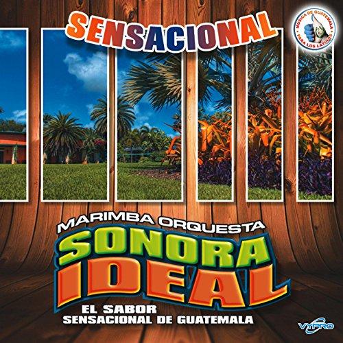 Tropisensacional: a Mover la Colita / Macumba / El Negro Jose / El Paraguas