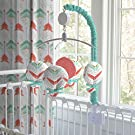Carousel Designs Coral and Teal Arrow Musical Mobile