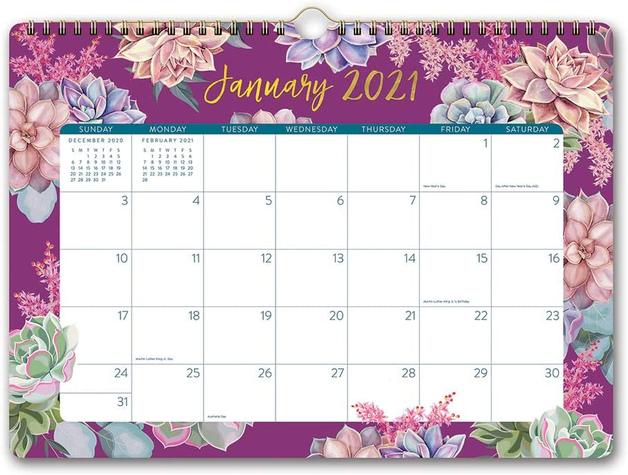 """Deluxe Wall Calendar 2021 in Succulent Garden by Orange Circle Studio - 14"""" x 10"""" 17-Month Wire-O Bound Hanging Large Format Calendar for Planning & Organizing Events & to-Dos"""