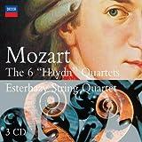 6 Haydn Quartets