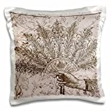 3dRose Hand Holding Fan Vintage Steampunk Art - Pillow Case, 16 by 16-inch (pc_110260_1)