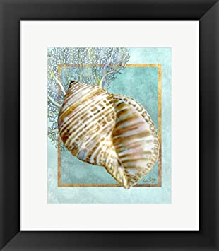 Great Art Now Turban Shell and Coral by Lori Shory Framed Art Print Wall Picture,