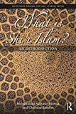 What is Shi'i Islam?: An Introduction (Routledge Persian and Shi'i Studies)