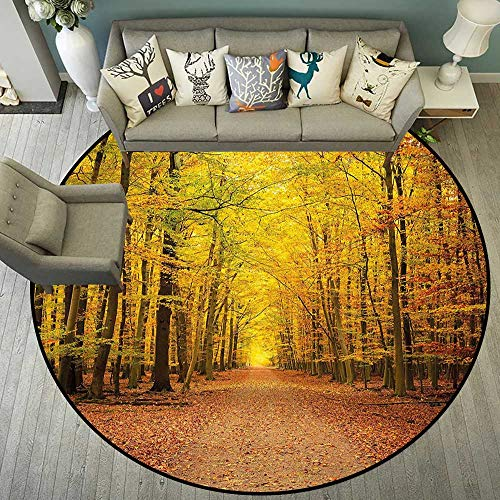 Circularity Floor mat Baby high Chair Round Indoor Floor mat Entrance Circle Floor mat for Office Chair Wood Floor Round mat for Living Room Pattern 4'11