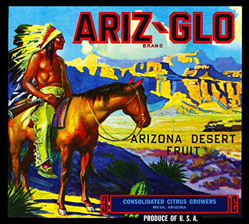 A SLICE IN TIME Mesa Arizona Ariz-Glo Brand Native American on Horseback Orange Citrus Fruit Crate Box Label Art Print