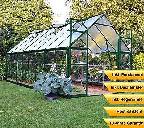 Palram aluminio Invernadero Jardín Casa Balance 48//487 x 244 x 229 cm (LxBxH); Invernadero & Tomate Casa para cultivo: Amazon.es: Jardín