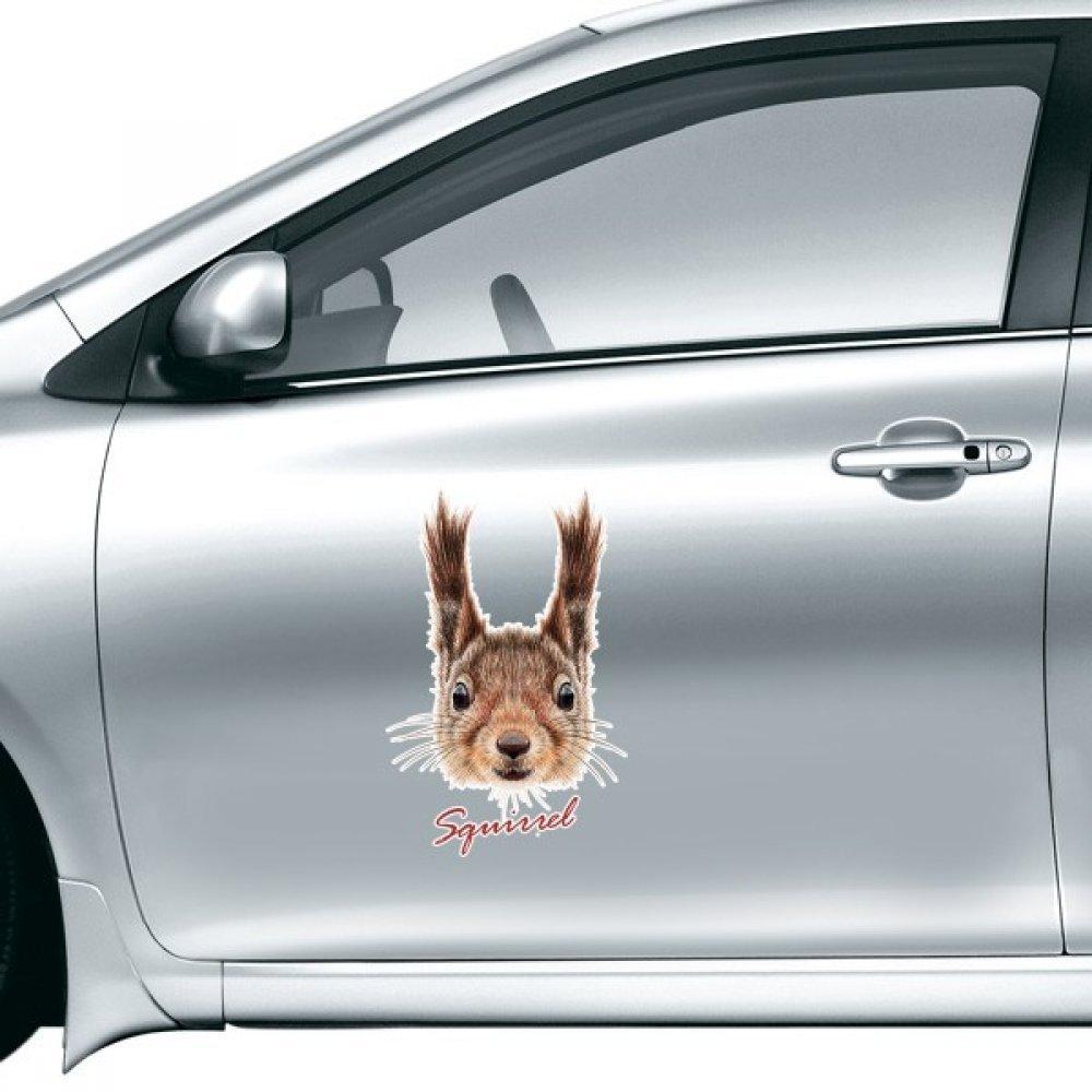DIYthinker Little Brown Lunghe orecchie scoiattolo animale autoadesivo dell'automobile sul Car Styling Decalcomania motociclo per Accessori Auto Regalo 20cm