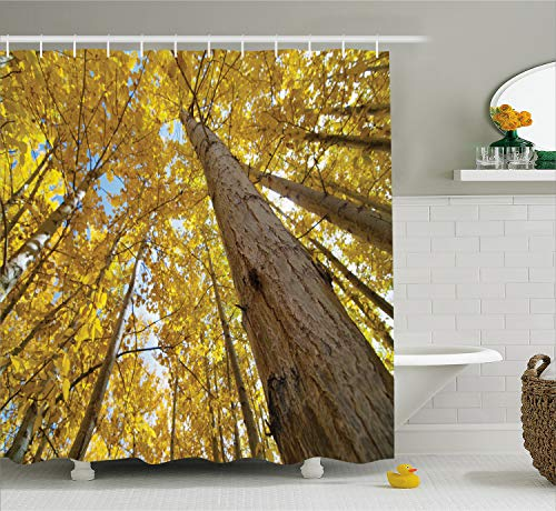- Ambesonne Forest Home Decor Shower Curtain, Up View of Fall Aspen Tree Leaves in Fade Tone Autumn Season Photo Image, Fabric Bathroom Decor Set with Hooks, 70 Inches, Yellow