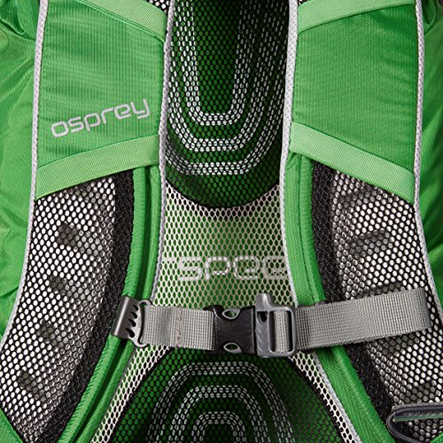 Osprey Packs Stratos 36 Backpack (2016 Model), Pine Green, Medium/Large by Osprey (Image #4)