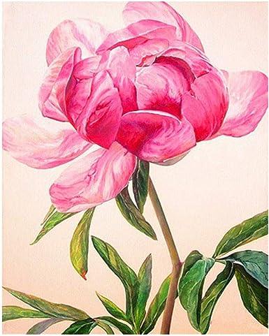 Peony Flowers Full Drill 5D Diy Diamond Painting Embroidery Cross Stitch Decor