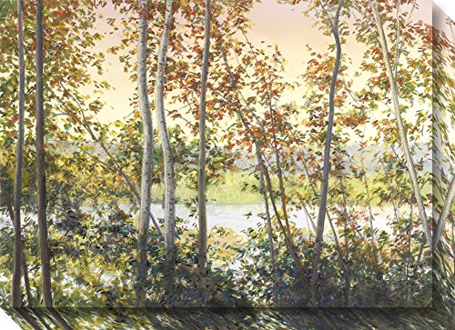 Amanti Art Canvas Art Gallery Wrap 'Autumn Shady' by Elissa Gore: Outer Size 28 x 20