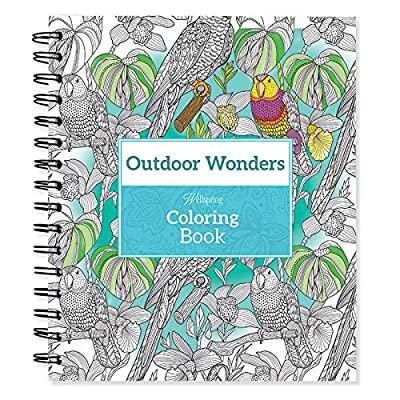Wellspring Grownup Notebook (6305): Office Products