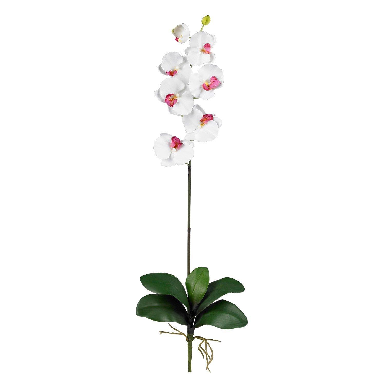 自然に近い2044-WH-12 31.5でH白胡蝶ステム 。12本セット White Flower Color White Flower Color B00F57MERU