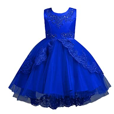 b6ea99286 Amazon.com: Toddler Baby Girls Party Wedding Dress Clothes 2-8 Years Old  Kids Child Lace Bowknot Pageant Birthday Dresses: Clothing
