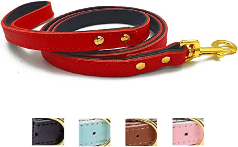 Ozpaw Padded Leather Dog Collar for Puppies Small Medium Dogs and Cats (Dog Leash, Red)