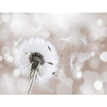 Fototapeten Pusteblumen Beige 352 x 250 cm Vlies Wand Tapete Wohnzimmer  Schlafzimmer Büro Flur Dekoration Wandbilder XXL Moderne Wanddeko Flower  100% ...