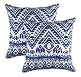 TreeWool (Pack of 2 Throw Pillowcase French Accent Decorative Cotton Cushion Cover (18 x 18 Inches / 45 x 45 cm; Navy Blue)
