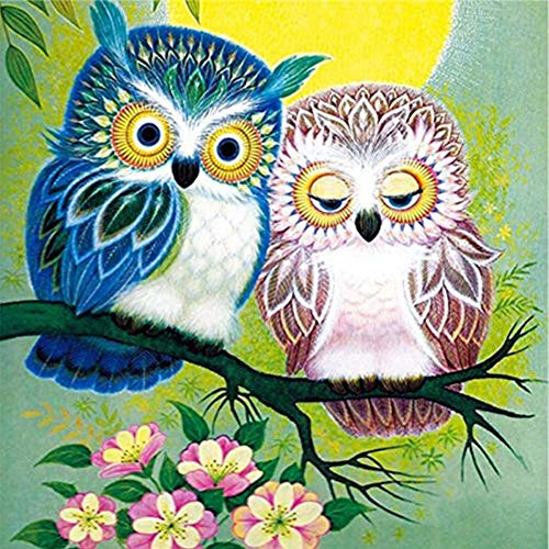 (DIY 5D Diamond Painting by Number Kits,Rhinestone Diamond Embroidery Paintings Pictures for Home Wall Decor Two Fresh Owls 11.8x11.8in 1 Pack by Lighting S)