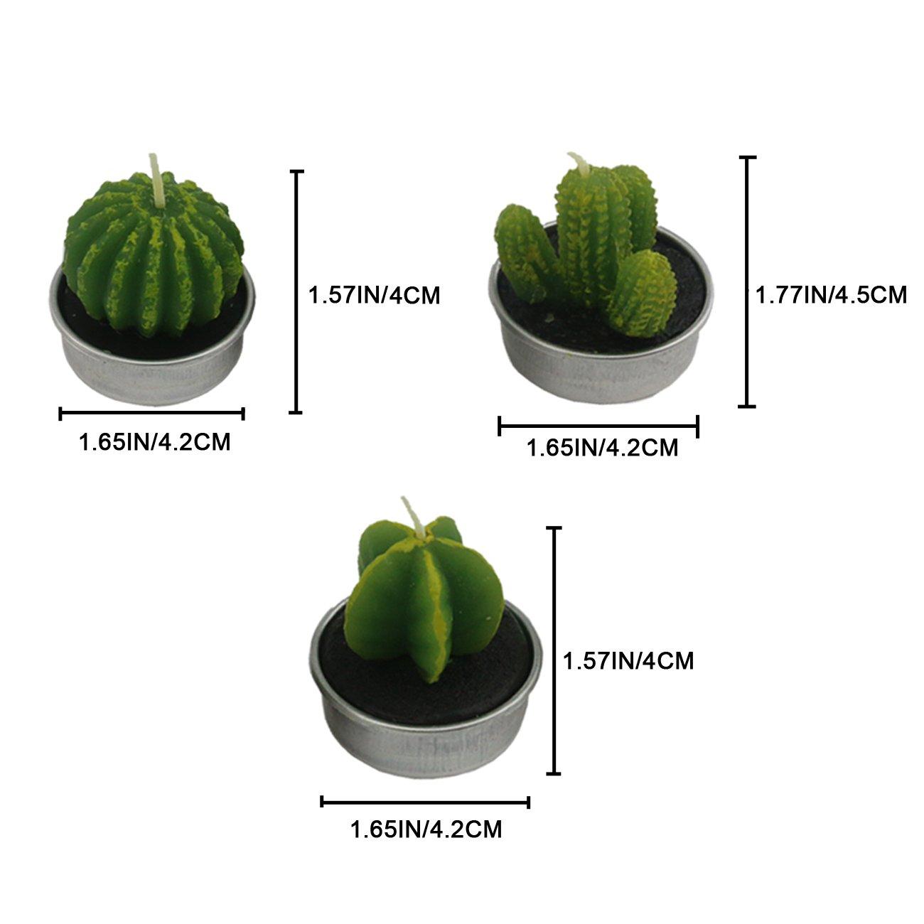 Amazon.com: Ogrmar - Velas de cactus decorativas para el ...