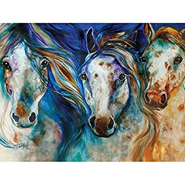 Westland Giftware Canvas Wall Art, Wild Appaloosa Horses, 12 by 16