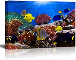 Canvas Wall Art - Coral Reef and Tropical Fish Under The Ocean | Modern Home Art Canvas Prints Gallery Wrap Giclee Printing & Ready to Hang - 24