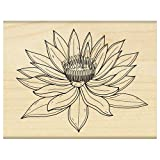 Penny Black Decorative Rubber Stamps, Water Lily