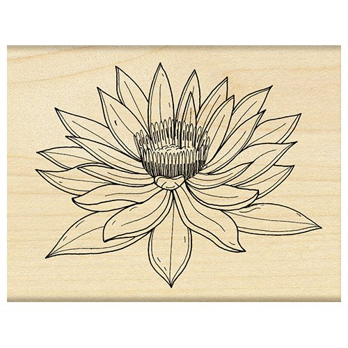 Penny Black Decorative Rubber Stamps, Water Lily by Penny Black Inc
