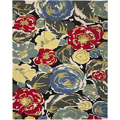 Safavieh Four Seasons Collection FRS437A Hand-Hooked Black and Multi Indoor/ Outdoor Area Rug (8' x 10')
