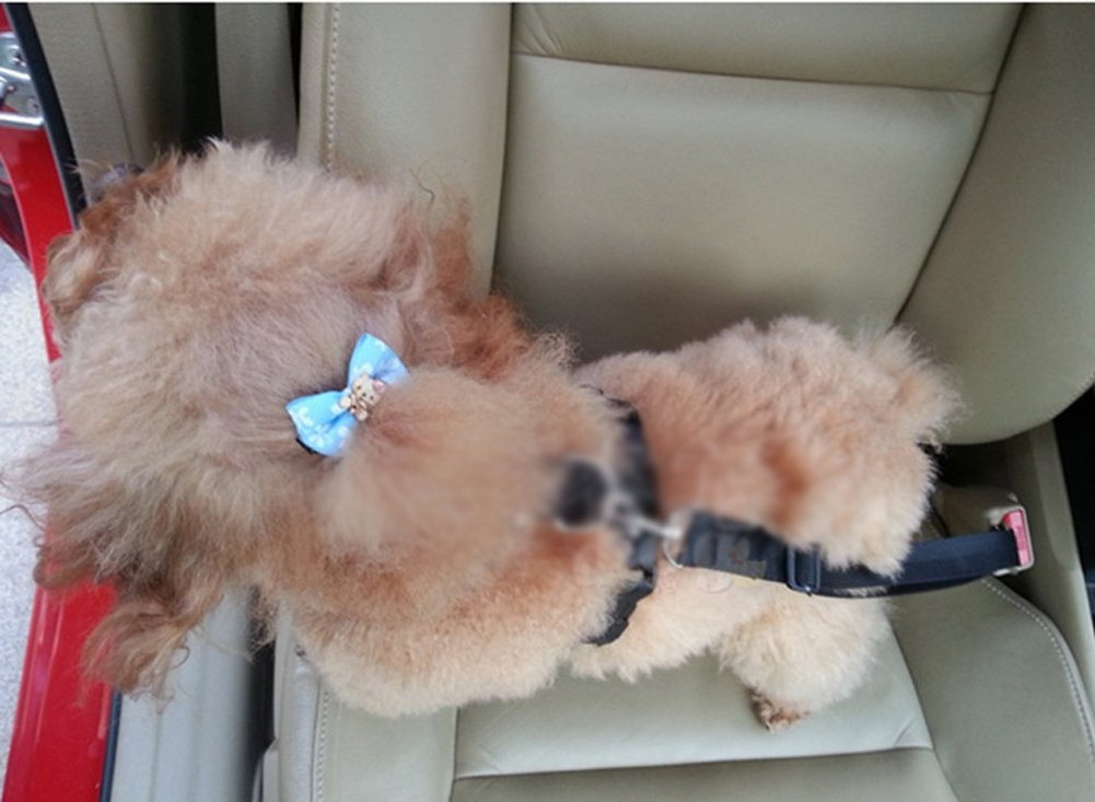 New Version Adjustable Padded Vehicle Car Dog Safety Harness Vest Seat Belt Combo Pet Car Travel System Gear for Small to Medium Large Dogs Cats