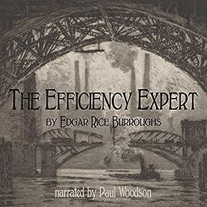 The Efficiency Expert Audiobook