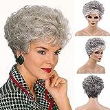 BLONDE UNICORN Short Grey Ombre Wavy Texture Human Hair Wigs Short Wigs for Women
