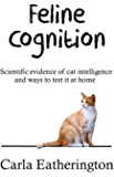 Feline Cognition: Scientific evidence of cat intelligence and ways to test it at home