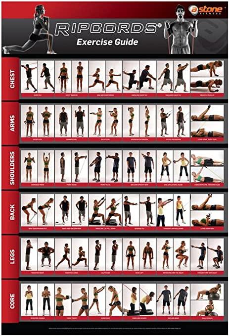 Amazon Com Ripcords Exercise Guide Poster Resistance Band