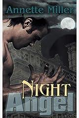 Night Angel (Angel Haven) Paperback