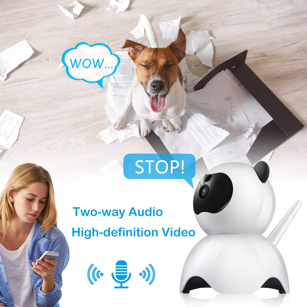Petacc Pet Camera Night Vision Dog Camera Indoor Cat Camera Wireless IP Camera for Pet Monitor, 2.4GHz, Two-Way Audio, 1080P Video, Motion Detection, Pan 350°, Tilt 65° by Petacc (Image #5)