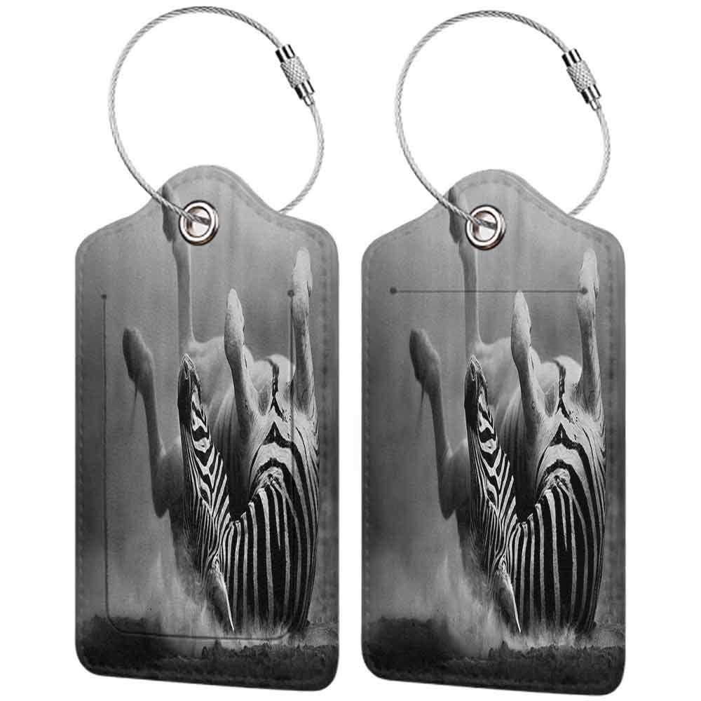 Modern luggage tag Wildlife Decor Zebra Rolling in the Dust Artistic Savage Mammal Activity Eco Black and White Photo Suitable for children and adults W2.7 x L4.6