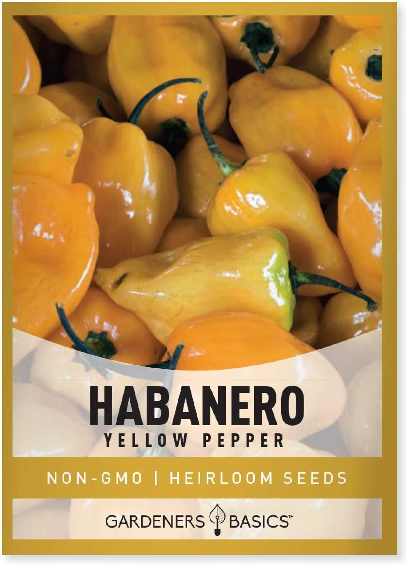 Yellow Habanero Pepper Seeds for Planting 100 Heirloom Non-GMO Habanero Peppers Plant Seeds for Home Garden Vegetables Makes a Great Gift for Gardeners by Gardeners Basics