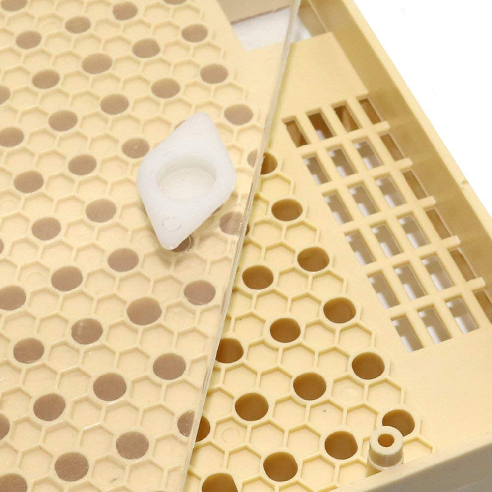 Lucky Farm 120Pcs Brown Cell Cups System Beekeeping Queen Rearing ...