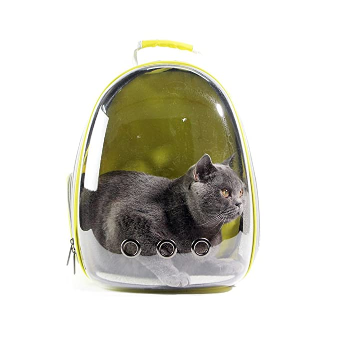 Amazon.com : Amakunft Transparent Pet Travel Carrier, Breathable Cat Space Capsule Bag Innovative Puppies Portable Backpack for Small Cats and Dogs, ...
