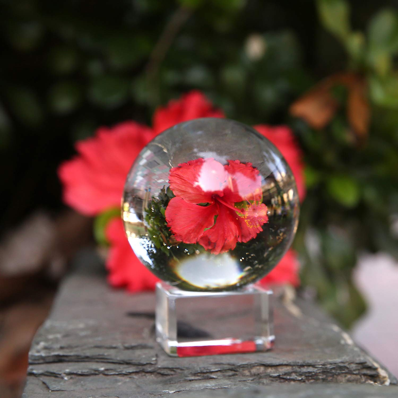 Neewer Pallina di Cristallo Chiaro 100mm Sfera con Base per FengShui Divinazione o Decorazione di Cerimonia Nuziale / Casa / Ufficio 99089687