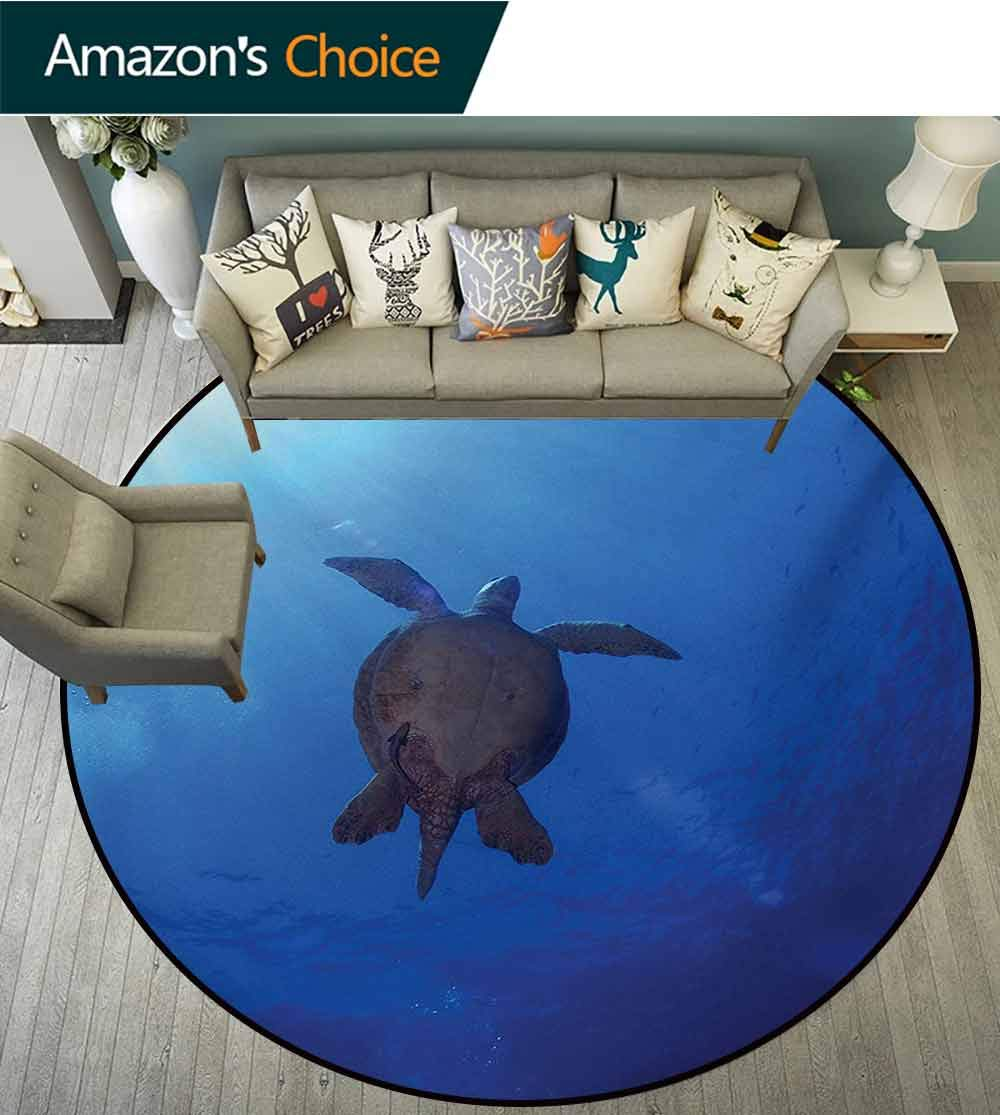 Ocean Modern Machine Washable Round Bath Mat,Sea Turtle Swims to The Surface of Deep Sea with The Sun Rays Nature Picture Art Non-Slip Living Room Soft Floor Mat,Round-31 Inch