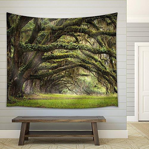 Oaks Avenue Charleston Sc Plantation Live Oak Trees Forest Landscape in Ace Basin South Carolina Lowcountry Fabric Wall