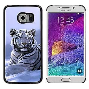 Design for Girls Plastic Cover Case FOR Samsung Galaxy S6 EDGE Winter Snow Tiger White Blue Cold OBBA